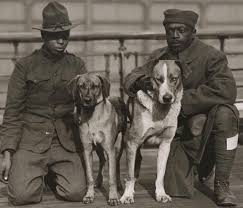 Black soldiers with dogs