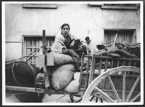 Refugee woman with dog